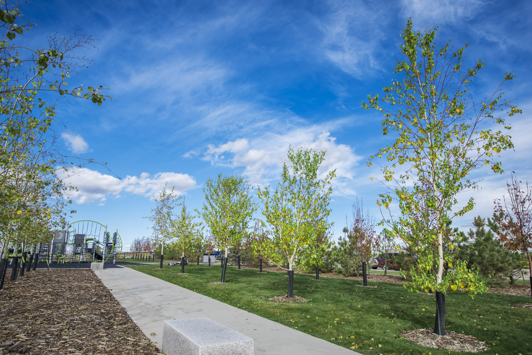 The Enclave In Carrington Exterior Others in Calgary Alberta by Mattamy Homes